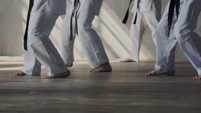 Панорама бойцов в белых кимоно с черными поясами, босоногая Напрактикуйте воевать позицию, тренировку южную и сток-видео