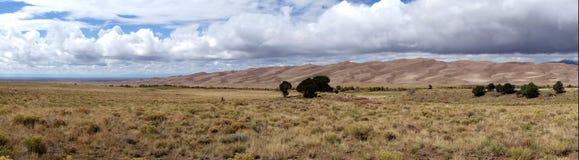 Панорама больших национального парка и заповедника песчанных дюн Стоковая Фотография