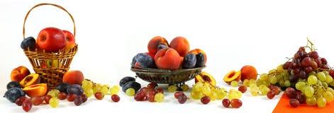 панорама Больш-формата с плодом на светлой предпосылке стоковые изображения rf
