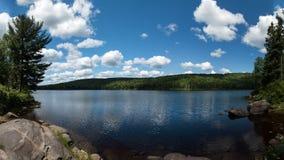 Панорама, бореальная глушь леса Стоковые Фото