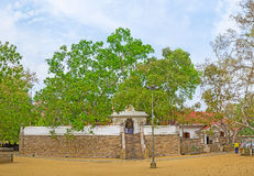 Панорама виска дерева Bodhi Стоковая Фотография
