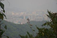 Панорама города стоковые фотографии rf