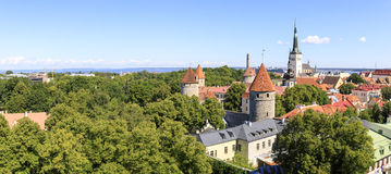 Панорама города городка Таллина старая в лете Стоковая Фотография