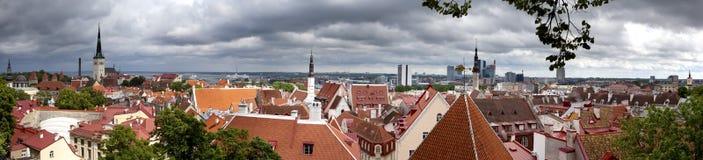 Панорама города от смотровой площадки крыш старого города tallinn эстония стоковое фото rf