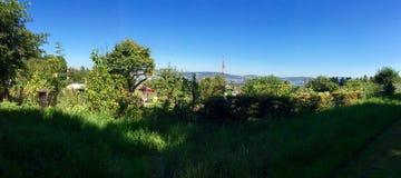 Панорама Городской-окраины Стоковое фото RF
