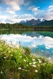 Панорама горы от озера Херберт стоковое фото