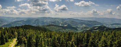 Панорама горы Стоковые Изображения