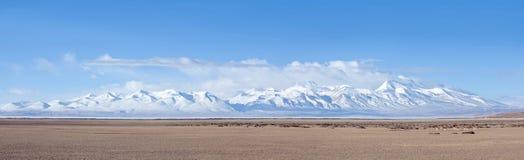 Панорама держателя Gurla Mandhata и табуна kiangs в Тибете, Китае Стоковые Фото