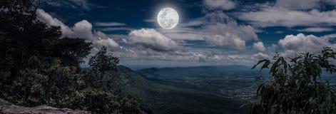 Панорама дерева и валунов против неба nighttime с пасмурным Стоковые Фото