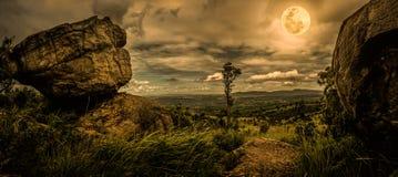 Панорама дерева и валунов против неба nighttime с пасмурным Стоковая Фотография RF