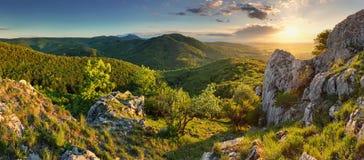 Панорама леса горы - Словакия стоковая фотография rf