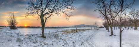 Панорама захода солнца зимы Стоковое Изображение RF
