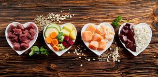 Панорама здоровых свежих ингридиентов для корма для домашних животных стоковое изображение