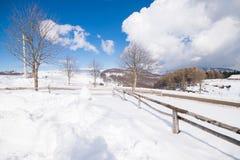 Панорама зимы холма покрытого снегом стоковые фотографии rf