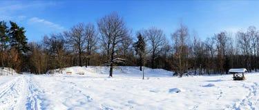 Панорама зимы Стоковая Фотография RF