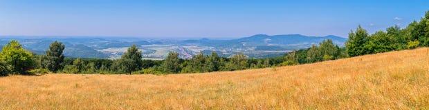 Панорама золотой степи, гор и зеленых деревьев Красота 100 и 80 градусов Стоковые Изображения