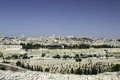 панорама Иерусалима Стоковые Фотографии RF
