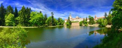 Панорама красивого замка Стоковое Изображение RF
