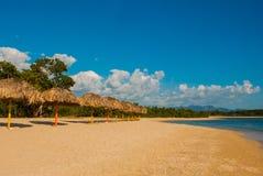 Панорама красивого тропического ландшафта: желтый песок, голубое карибское море, пальмы кокоса, зонтики для туристов Mountai Стоковое Изображение RF