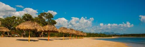 Панорама красивого тропического ландшафта: желтый песок, голубое карибское море, пальмы кокоса, зонтики для туристов Mountai Стоковые Изображения RF