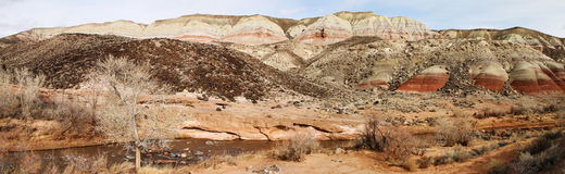 Панорама красных горных пород стоковое изображение