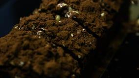 Панорама крупного плана на cutted вкусном десерте шоколада сток-видео