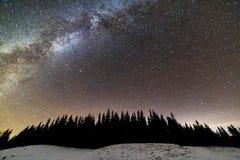 Панорама ландшафта ночи гор зимы Созвездие млечного пути яркое в темно-синем звездном небе над темными елевыми соснами стоковые изображения rf