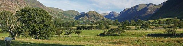 панорама ландшафта стоковое изображение