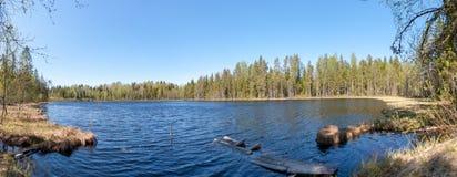 Панорама леса озера стоковая фотография rf
