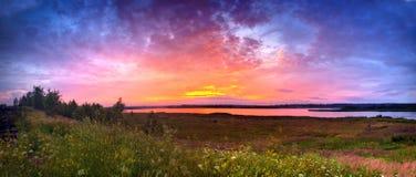 Панорама лета Стоковая Фотография