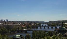 Панорама мостов над рекой Viltava стоковое изображение rf