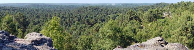 Панорама национального леса pignons Trois французская стоковые фото