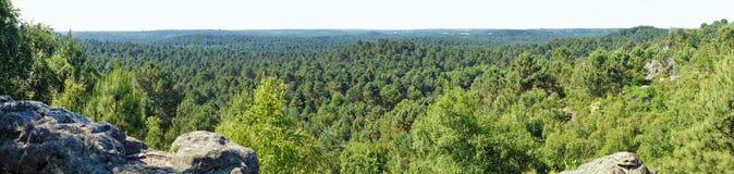 Панорама национального леса pignons Trois французская стоковое изображение rf