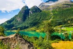 Панорама Норвегии Nordfjord и ландшафт горы Стоковые Изображения