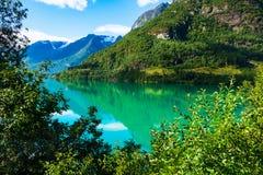 Панорама Норвегии Nordfjord и ландшафт горы Стоковые Изображения RF