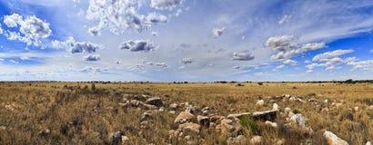 Панорама дня равнины SA Nullarbor Стоковое Изображение RF
