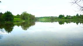 Панорама озера в сельской местности акции видеоматериалы