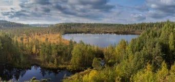 панорама озера холмов пущи Стоковое фото RF