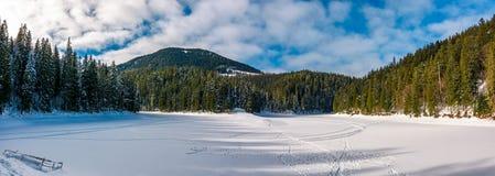 Панорама озера Synevyr в зиме Стоковая Фотография RF