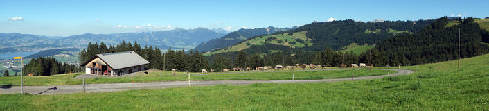 Панорама дома фермы и зеленого выгона Стоковые Фотографии RF