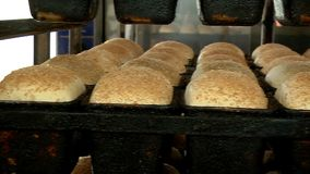 Панорама отлитого в форму хлеба видеоматериал