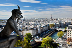 Панорама Парижа, франция. Эйфелеваа башня, Река Сена Стоковые Фотографии RF