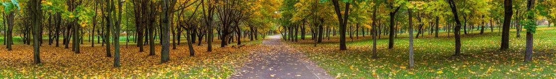 Панорама парка города осени Стоковая Фотография RF