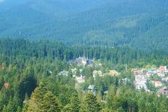Панорама пейзажа прикарпатских гор, леса ели, кудели Sinaia Стоковые Изображения