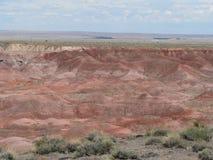 Панорама покрашенной пустыни Стоковое Изображение RF