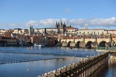Панорама Праги, Карлова моста стоковое фото