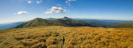 Панорама прикарпатских гор в дне лета солнечном Стоковое Изображение