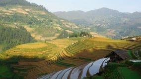 Панорама принятая в район MUCANGCHAI провинции YENBAI, Вьетнама Для того чтобы создать террасы полюбите это, фермеры работать оче стоковые фотографии rf