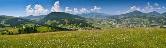 Панорама природы - лес в лужке вверху гора Стоковые Изображения