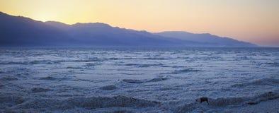 панорама пустыни Стоковое Изображение RF